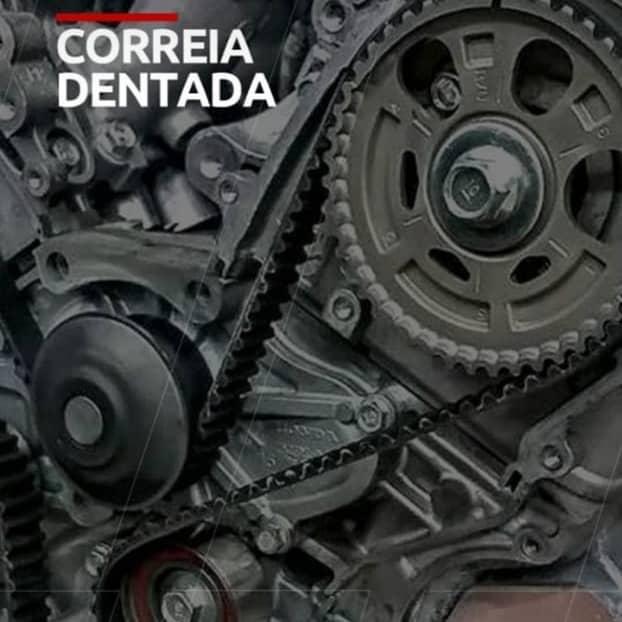 Correia Dentada
